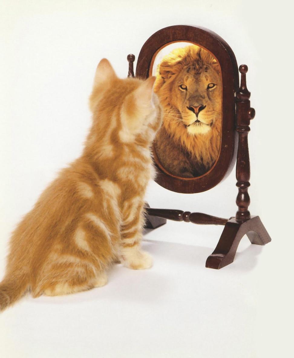 SELF-IMAGE- ΑΥΤΟΕΙΚΟΝΑ: Τεστ-Πόσο θετική είναι η αυτοεικόνα σου; | Άνθια Χριστοδούλου Θεοφίλου | Anthia.net